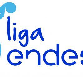 Apuesta de Baloncesto – Liga Endesa – San Pablo Burgos vs Divina Seguros Joventut